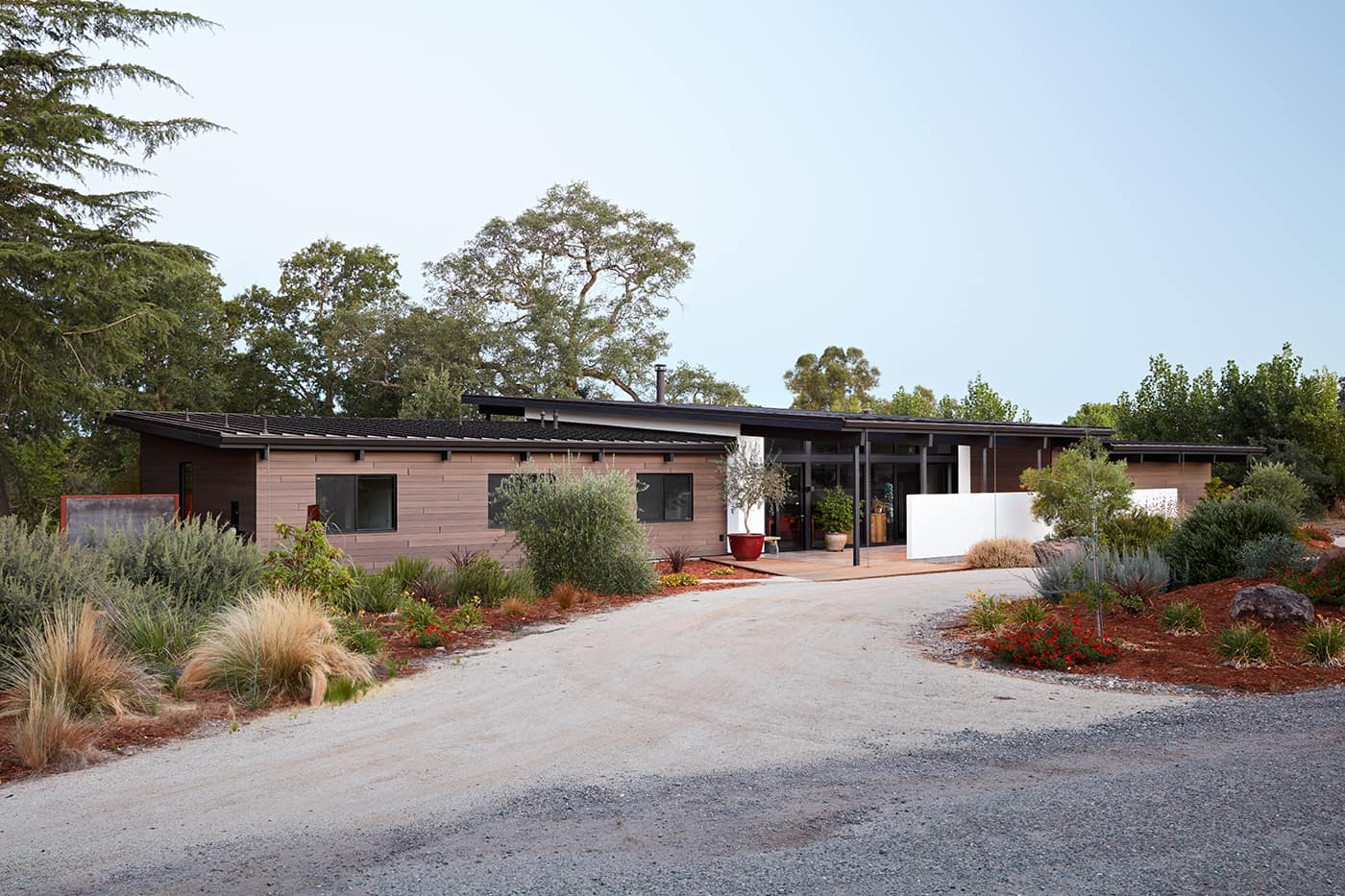 mid-century house renovation by Klopf architects in Sacramento - exterior driveway