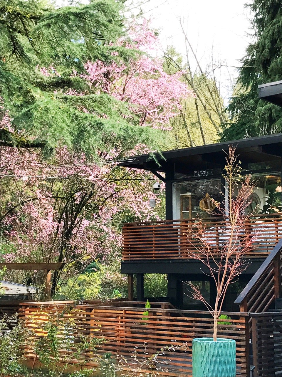 John Burrows mid-century house Seattle - exterior