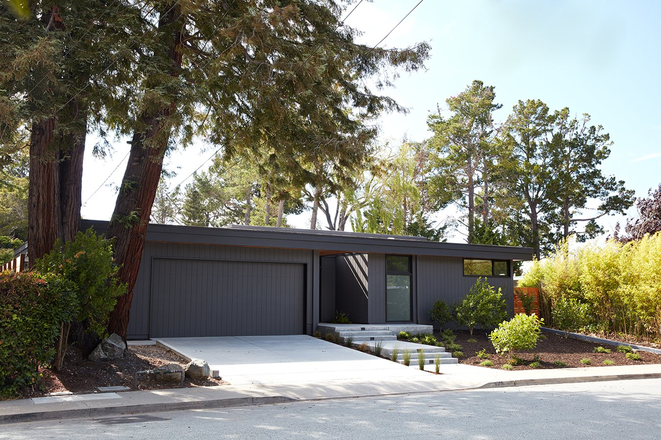 Klopf Architecture - Glass Wall House - exterior