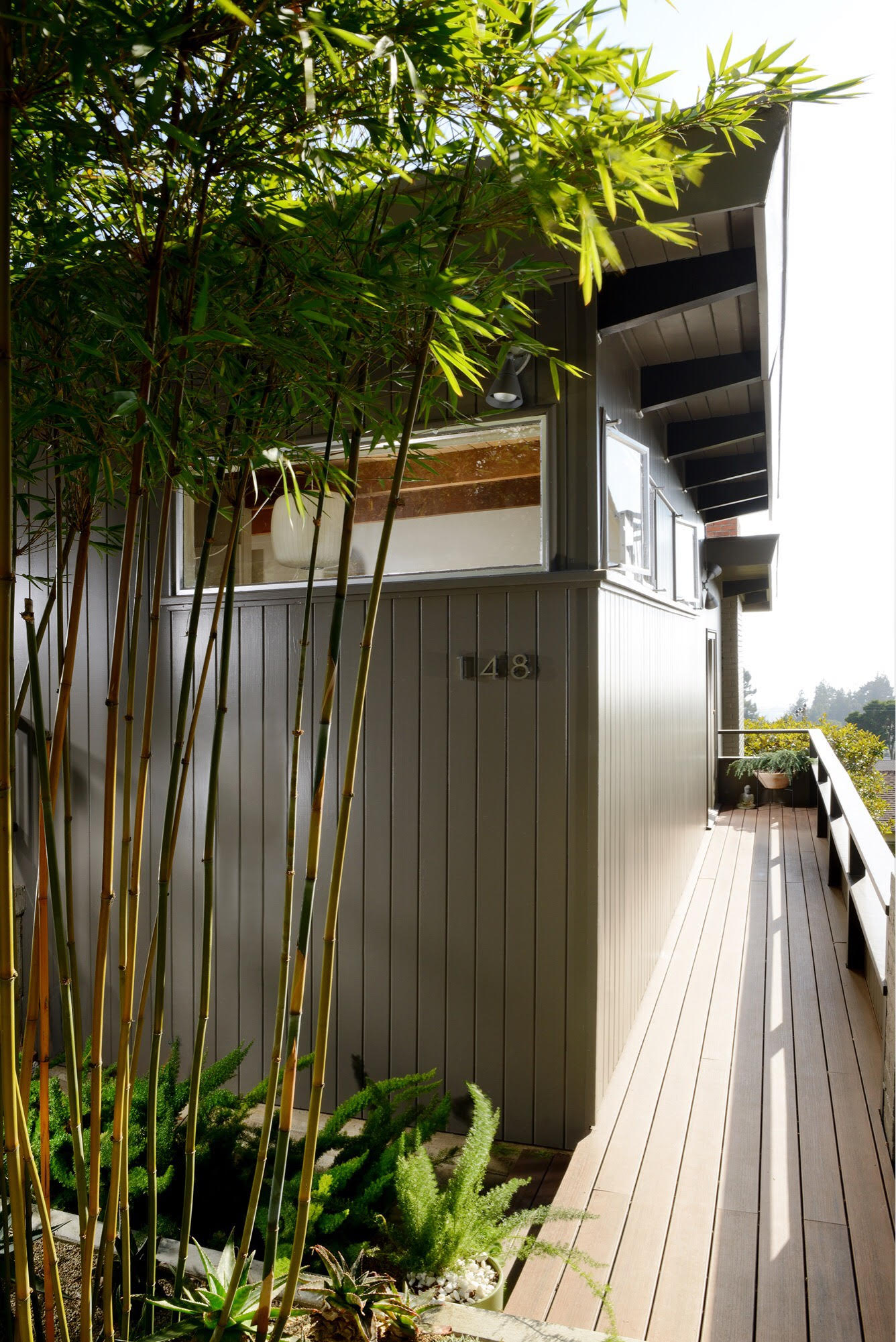 mid-century home in kensington, ca - dan chavkin - outside terrace
