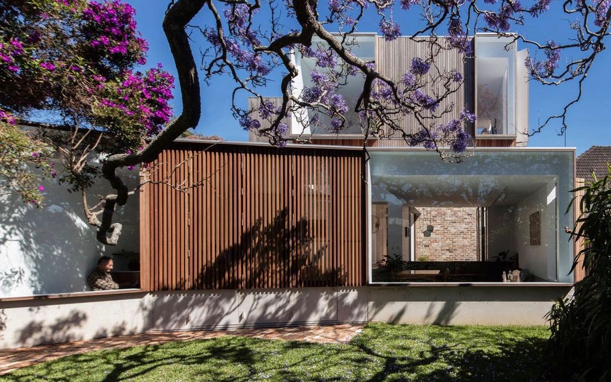 A Modern Extension Centred Around A Century Old Jacaranda Tree