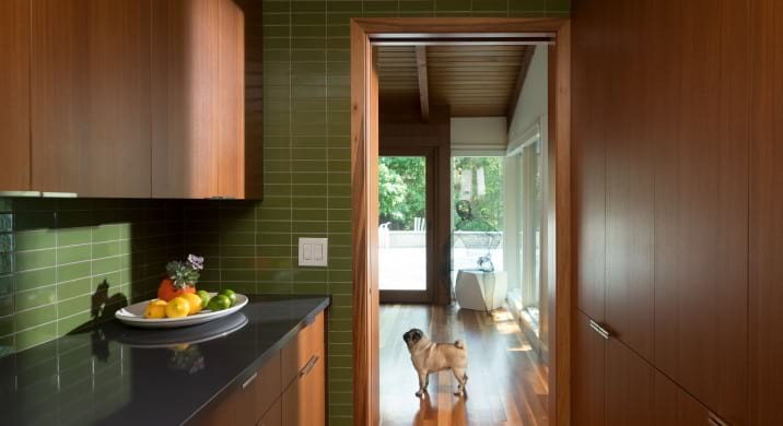 Midcentury modern home renovation in Minnesota - kitchen